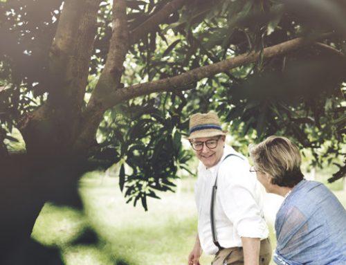 Cuidar da aposentadoria é só se preocupar com o dinheiro?
